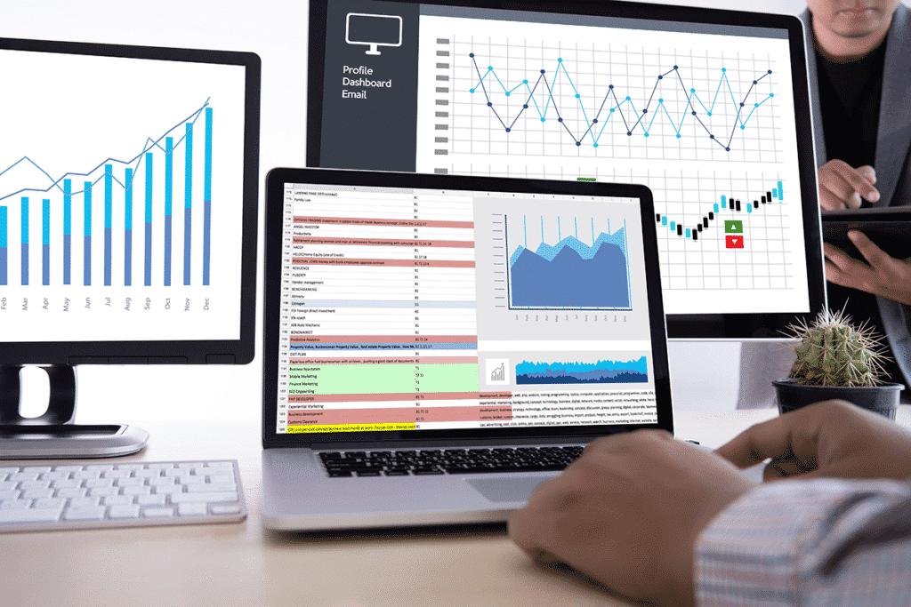דוחות התקדמות וביצועיות שטיינר מדיה פרסום בדיגיטל